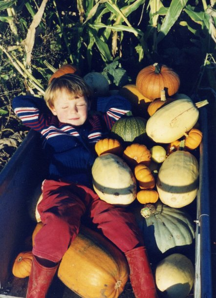 sam in pumpkins