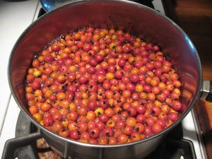cooking haws