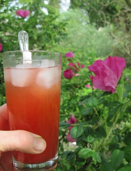 strawberry-rose cordial