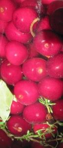 brined cherries