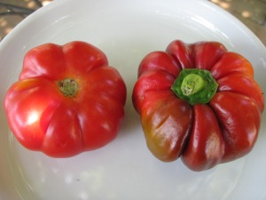 A Costoluto Genovese tomato, left, beside a Kishinev pepper