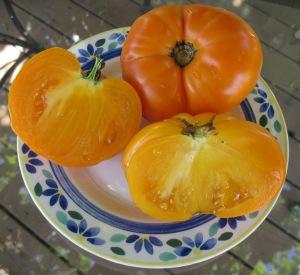 Tangerine & Persimmon tomatoes