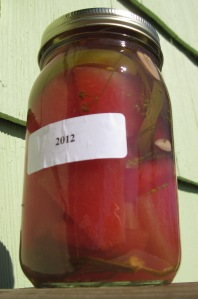 Gwen's watermelon pickle