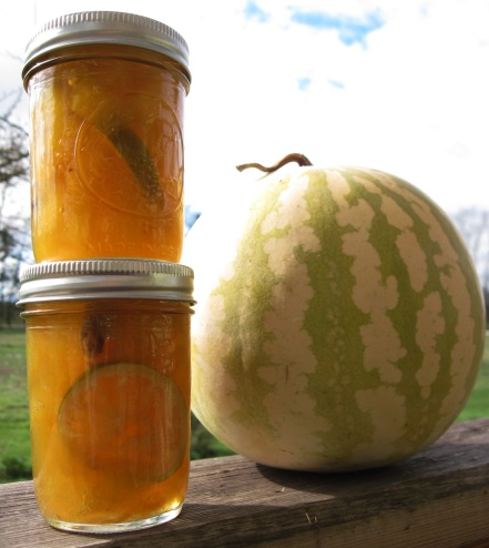 pickled citron melon