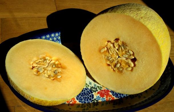 Asian melon