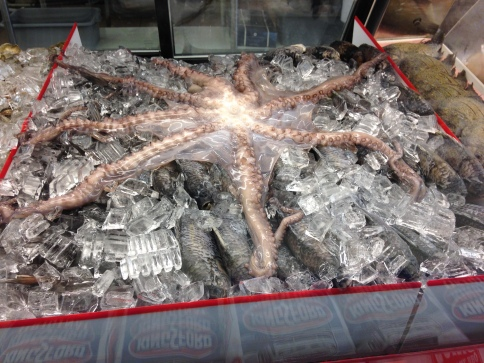 octopus-at-supermercado-mexico