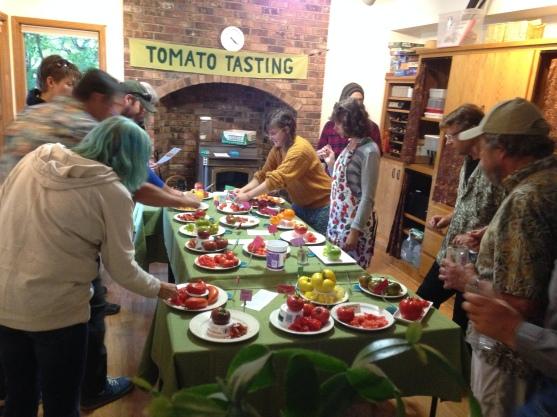 tomato-tasting-at-almarodes