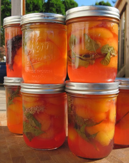 nectarines in jars