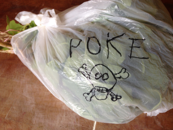 bag of poke, small