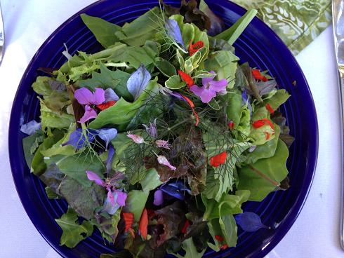 Thyme Garden salad, small